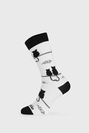 Fusakle zokni, Kandúr és macska