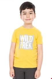 T-shirt chłopięcy Zealous