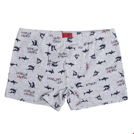 Boxeri baieti LAMA Shark